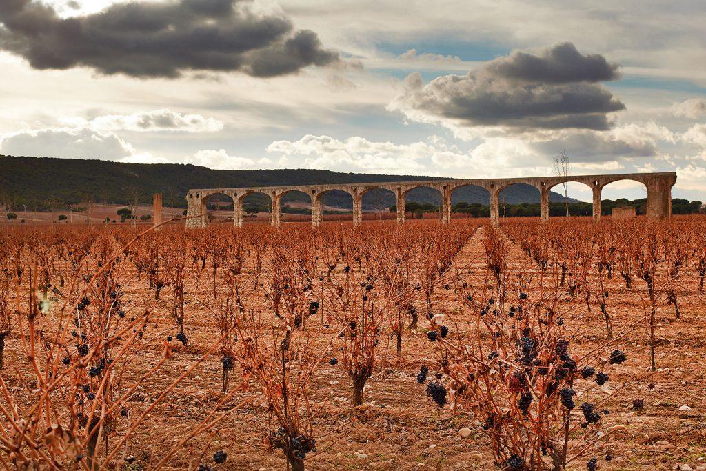 Weinhandel, Kurt Balk, Vega Sicilia, Weingut, Bodega, Rotwein, Rioja, Vinzer, Spanien