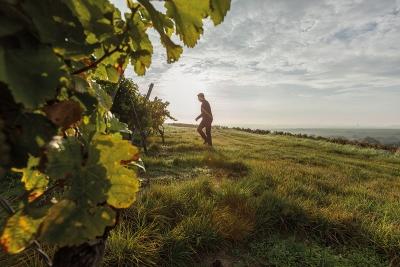 Kurt Balk Weinhandel Bonn